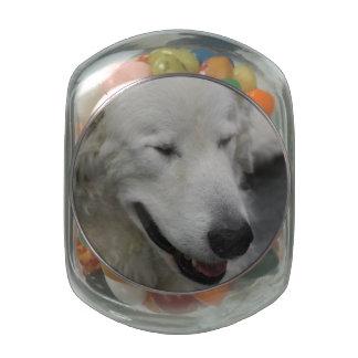 Perro soñoliento de Kuvasz Jarras De Cristal