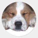 Perro soñoliento del compinche etiqueta redonda