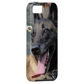 Perro sonriente de Malinois del belga iPhone 5 Coberturas