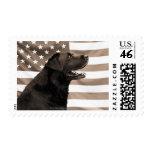 Perro y bandera americana