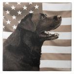 Perro y bandera americana azulejo cerámica