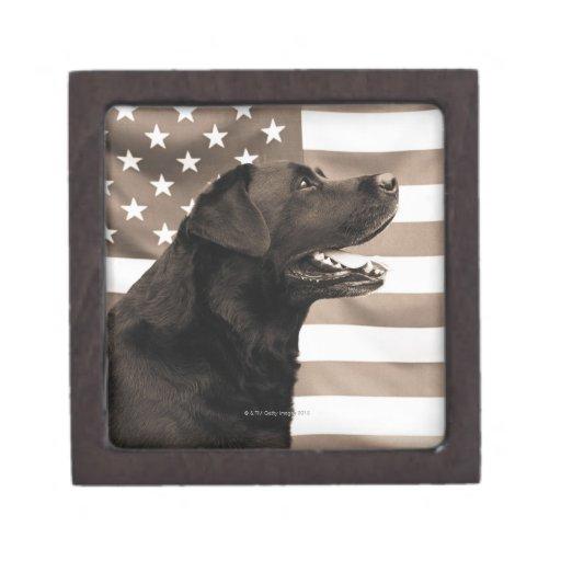 Perro y bandera americana cajas de regalo de calidad