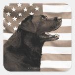 Perro y bandera americana calcomanía cuadrada