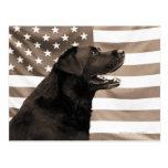 Perro y bandera americana postales