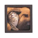 Perro y gato - amigos para siempre cajas de joyas de calidad