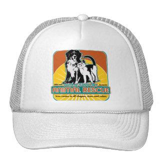 Perro y gato animales del rescate gorra