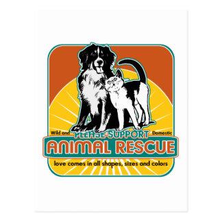 Perro y gato animales del rescate postales