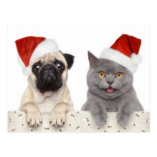 Perro y gato en gorra rojo del navidad postales