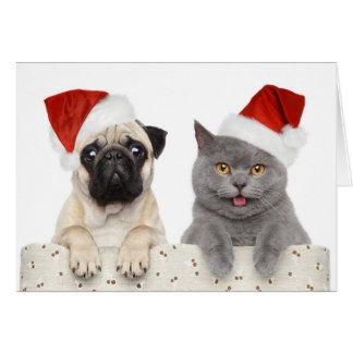 Perro y gato en gorra rojo del navidad tarjeta de felicitación