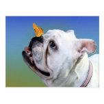 Perro y mariposa tarjeta postal
