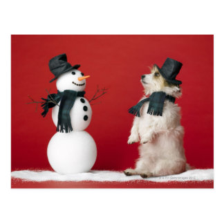 Perro y muñeco de nieve tarjetas postales