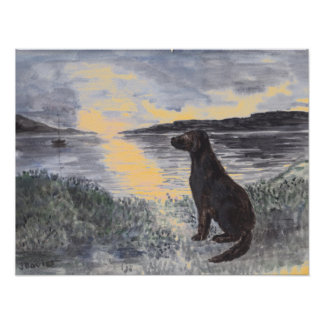 Perro y paisaje marino en la puesta del sol póster