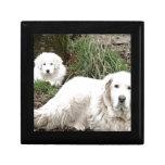 Perro y perrito de los grandes Pirineos Cajas De Regalo