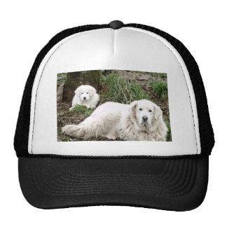 Perro y perrito de los grandes Pirineos Gorros Bordados
