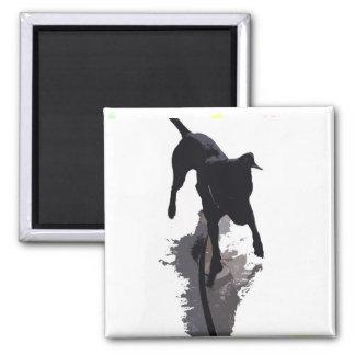 perro y sombra posterized imán cuadrado