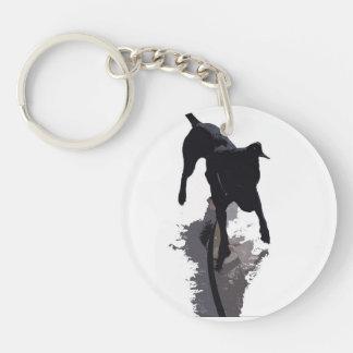 perro y sombra posterized llaveros