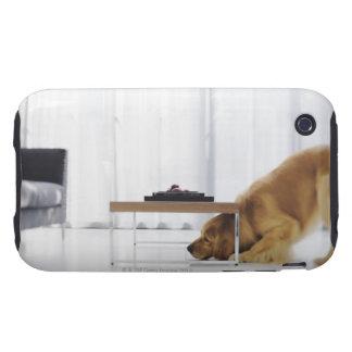 Perro y tabla tough iPhone 3 carcasas