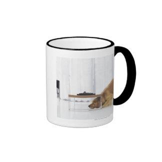 Perro y tabla taza de café