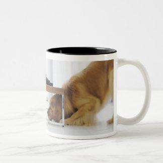 Perro y tabla taza de dos tonos