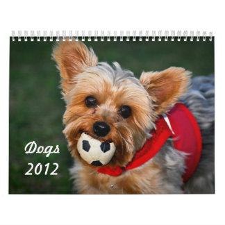 Perros 2012 calendario