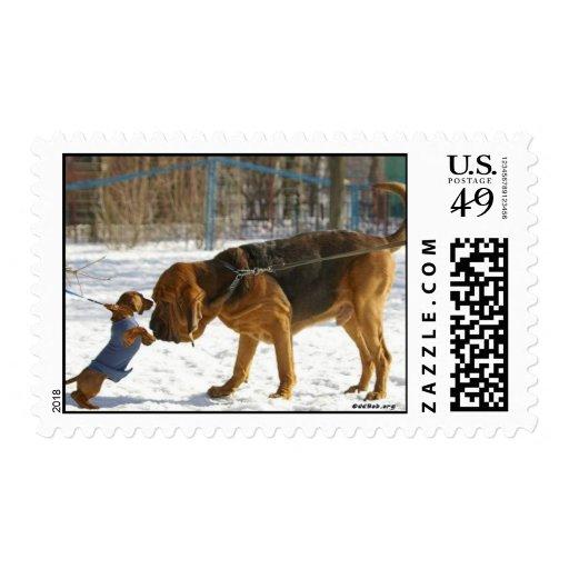 Perros amistosos sellos