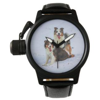 Perros australianos de los pares del pastor relojes de pulsera