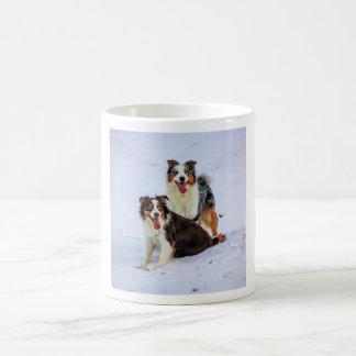 Perros australianos de los pares del pastor taza de café