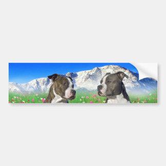 Perros Brindle y azules de Staffordshire y del pit Pegatina De Parachoque