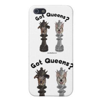Perros conseguidos del ajedrez del Queens iPhone 5 Cobertura