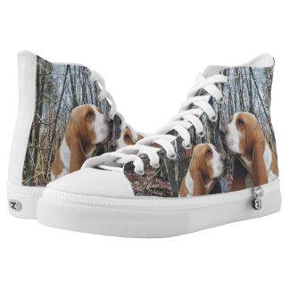 Perros de afloramiento en las maderas zapatillas