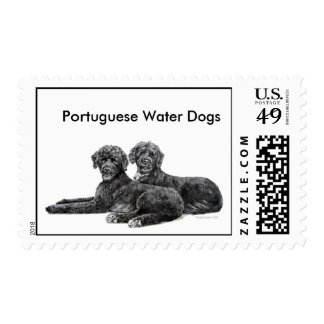Perros de agua portugueses sello postal