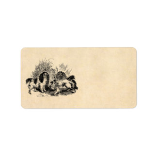 Perros de aguas de los 1800s del perro del perro d etiquetas de dirección