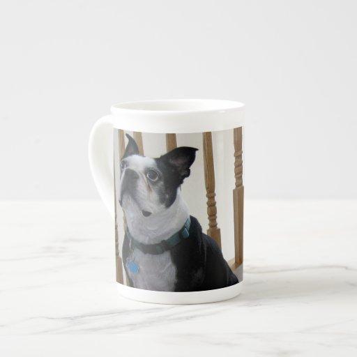 Perros de Boston Terrier Taza De Porcelana