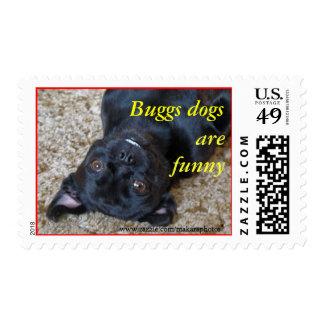Perros de Buggs--Sello-personalizar SQ él