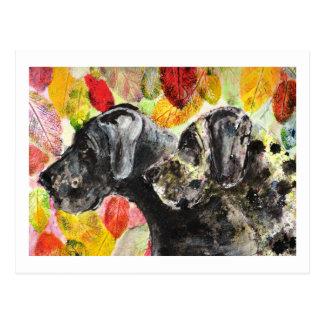 Perros de great dane de las ilustraciones tarjeta postal