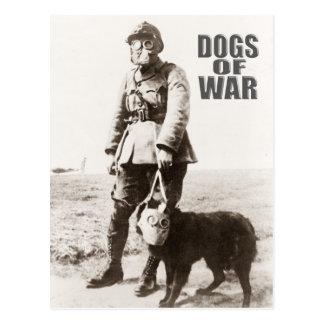 Perros de la careta antigás de la guerra que lleva tarjeta postal