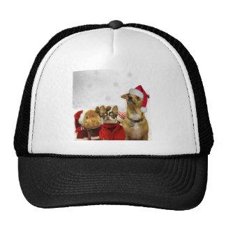 Perros de la chihuahua del navidad gorra