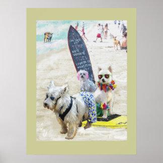 perros de la resaca póster