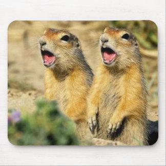Perros de las praderas del canto alfombrilla de raton