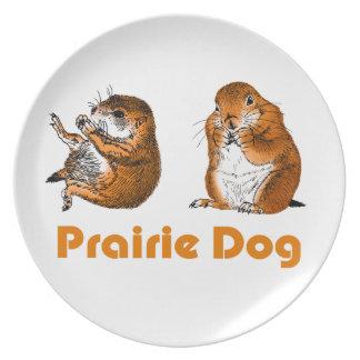 Perros de las praderas, placa platos