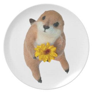 Perros de las praderas, placa platos de comidas