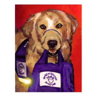 Perros de nordeste del servicio de Wisconsin Postales