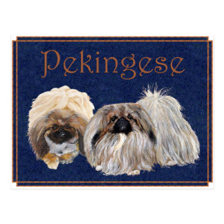 Perros de Pekingese Postal