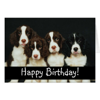 Perros de perrito adorables felicitacion