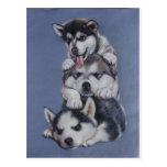 Perros de perrito postal