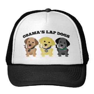 Perros de revestimiento de Obama - los medios de l Gorros