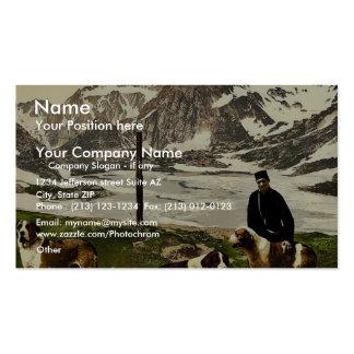 Perros de St Bernard, Valais, montañas de, cla de  Tarjetas De Visita