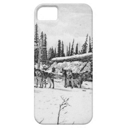 Perros de trineo de Alaska que se colocan fuera de iPhone 5 Case-Mate Carcasa