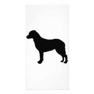 Perros del amor de la silueta del perro perdiguero plantilla para tarjeta de foto