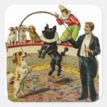 Perros del circo del Victorian, payaso del instruc Pegatinas Cuadradas